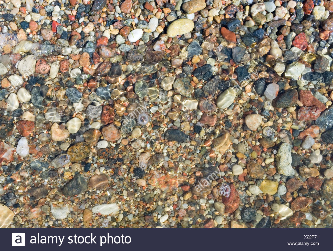 Sea pebbles. - Stock Image
