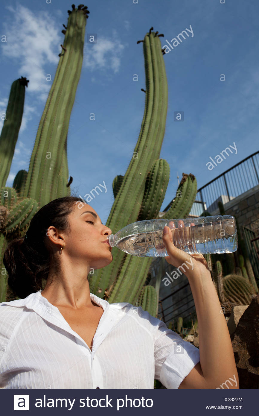 Woman drinking from water bottle in front of a cactus, Barcelona, Spain, Europe - Stock Image