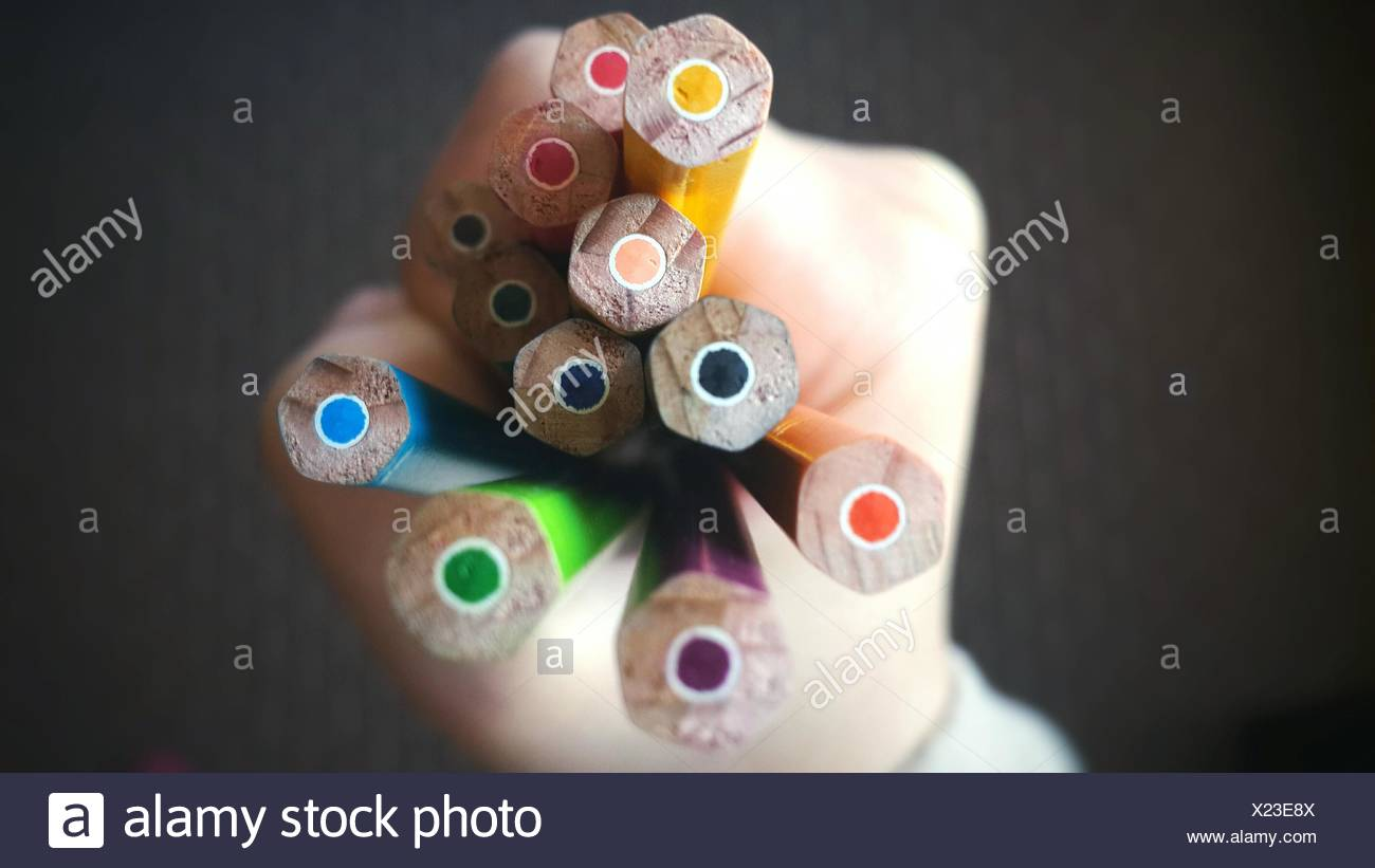 Cropped Hand Holding Colored Pencils - Stock Image