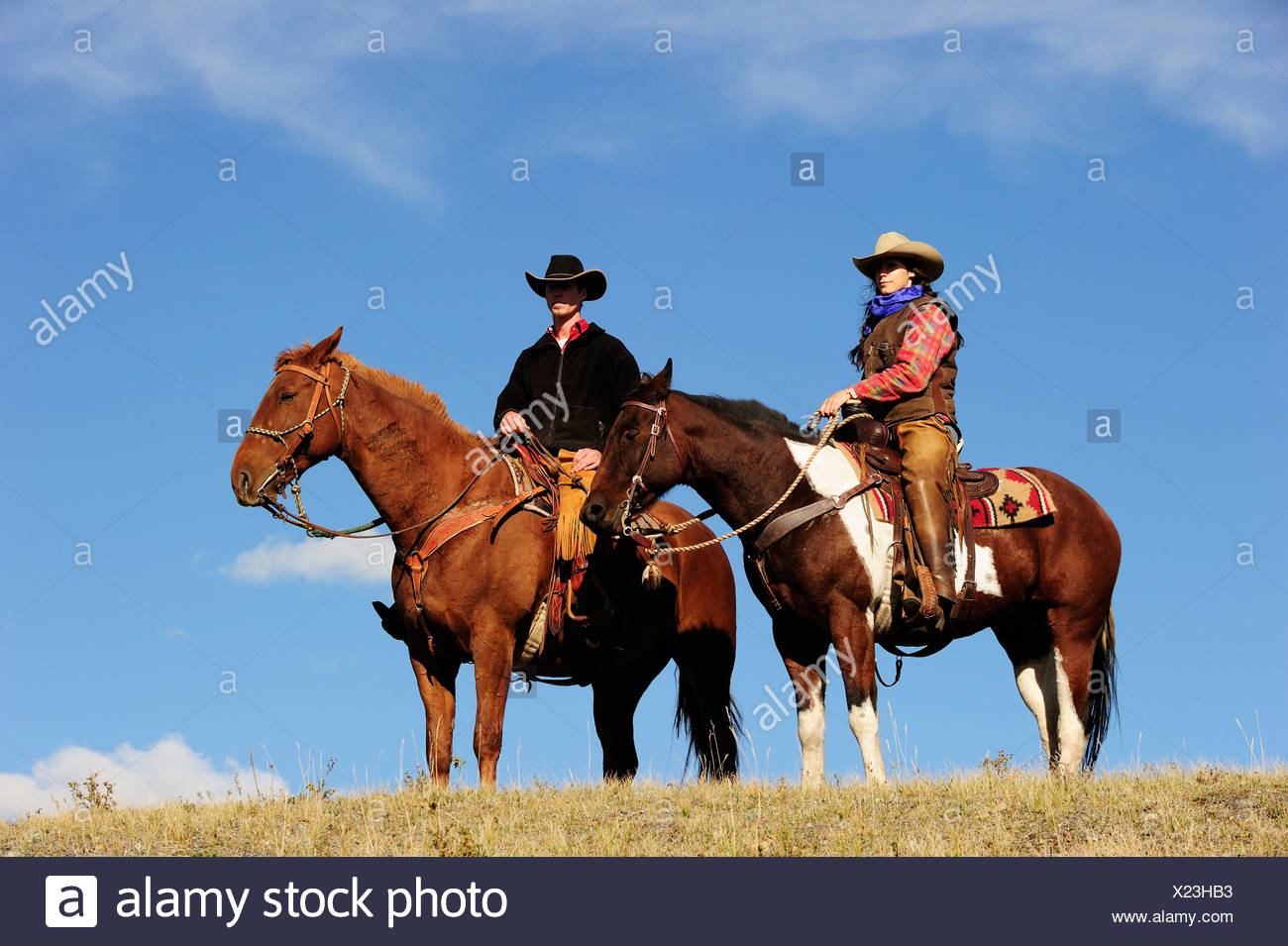 Cowgirl and cowboy on horses looking into the distance, Saskatchewan, Canada, North America Stock Photo