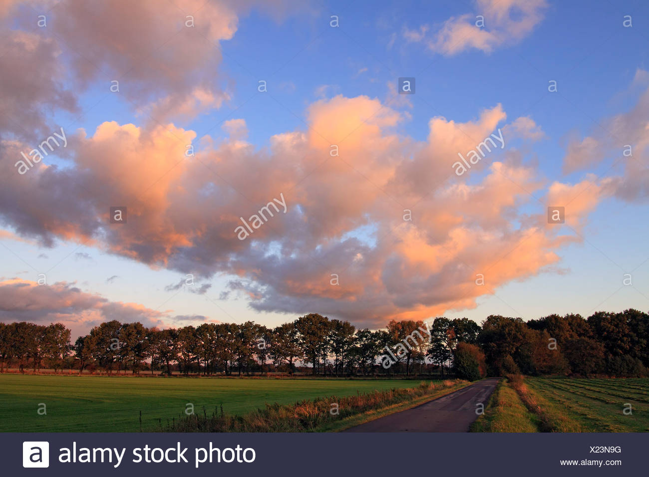 Dramatic sky with clouds illuminated in red light from the late evening sun at sunset, landscape in Oberalsterniederung Nature  - Stock Image