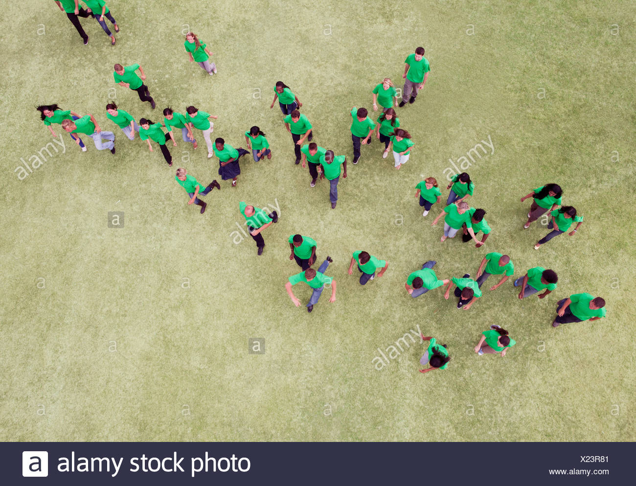 People in green t-shirts walking in field - Stock Image