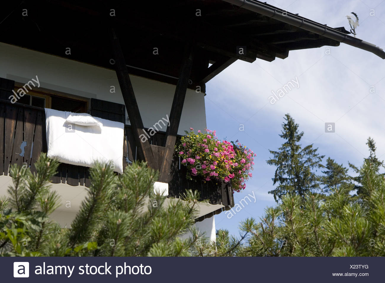 Residence detail balcony flowers bedding airs house Alps-house forest trees idylls vacation vacation house balcony-flowers bed - Stock Image