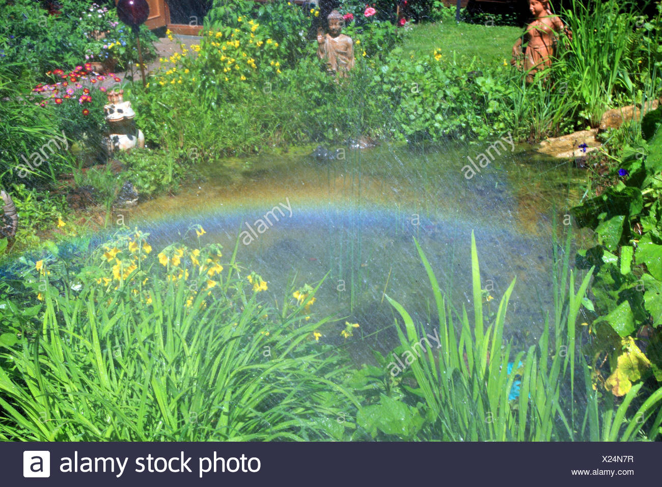 Rainbows over garden pond, - Stock Image