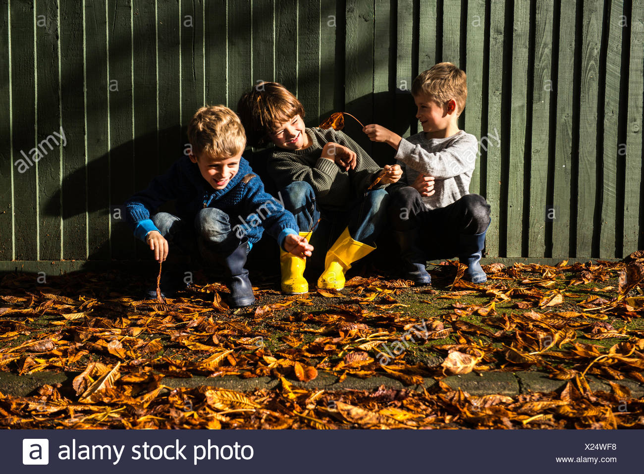 Three young boys, sitting against fence, surrounded by autumn leaves - Stock Image