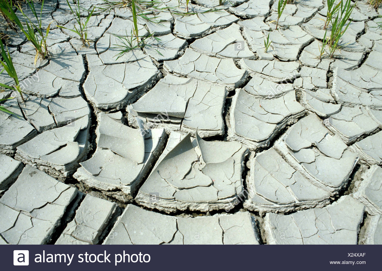 Parched & cracked soil dried out after waterlogging - Stock Image