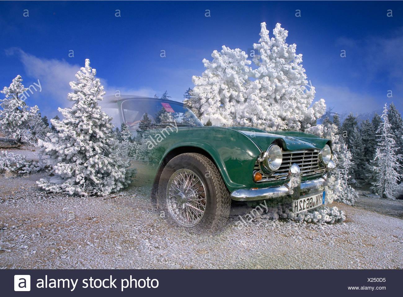 Triumph TR 4 - Stock Image