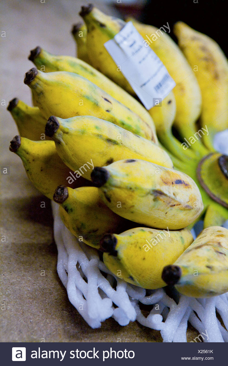 Close up of bunch of bananas - Stock Image