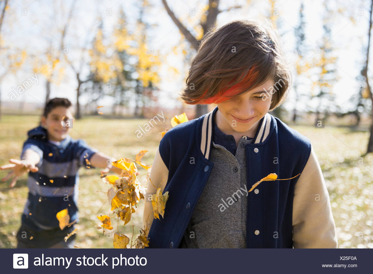 Playful tween boys throwing autumn leaves in sunny park - Stock Image