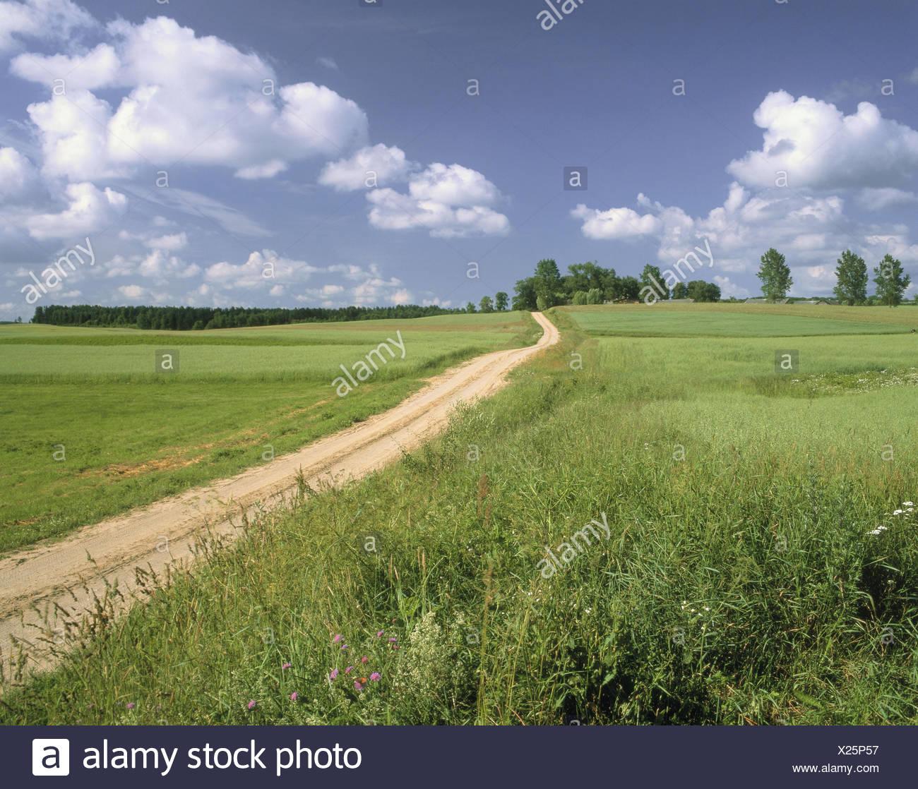 PL' Masuria, country lane - Stock Image