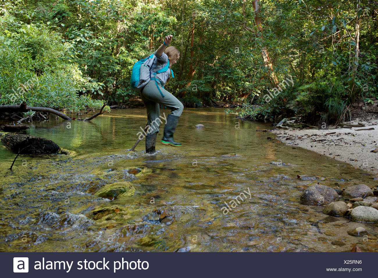 A girl crosses a rain forest stream in Gunung Palung National Park. - Stock Image
