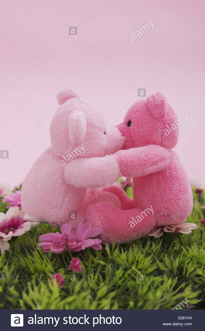 Dekowiese, substance bears, two, pink ones, - Stock Image