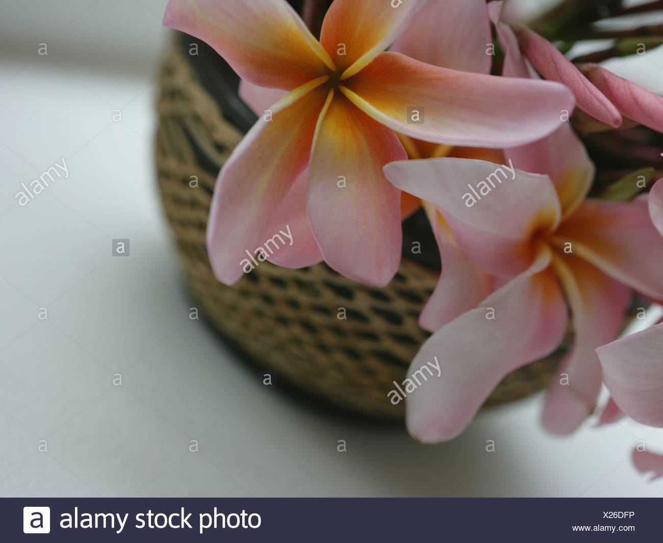 Close-up of flowers in a wicker basket - Stock Image