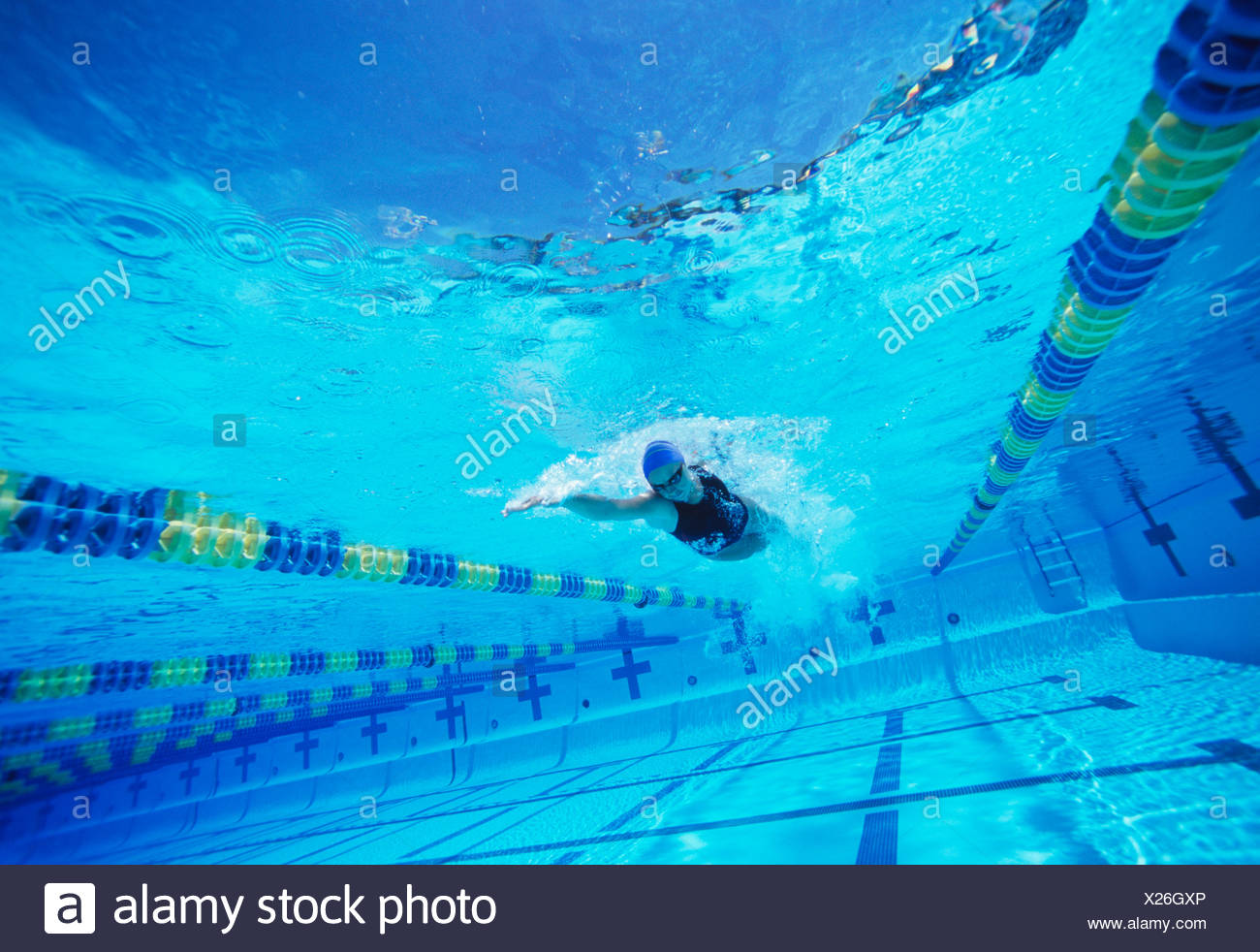 Young female swimmer in competition - Stock Image