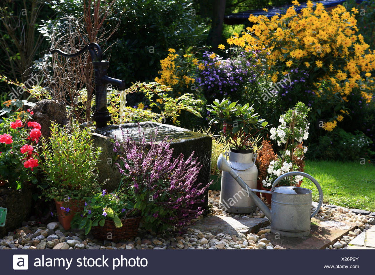 hand pump and trough in the garden - Stock Image