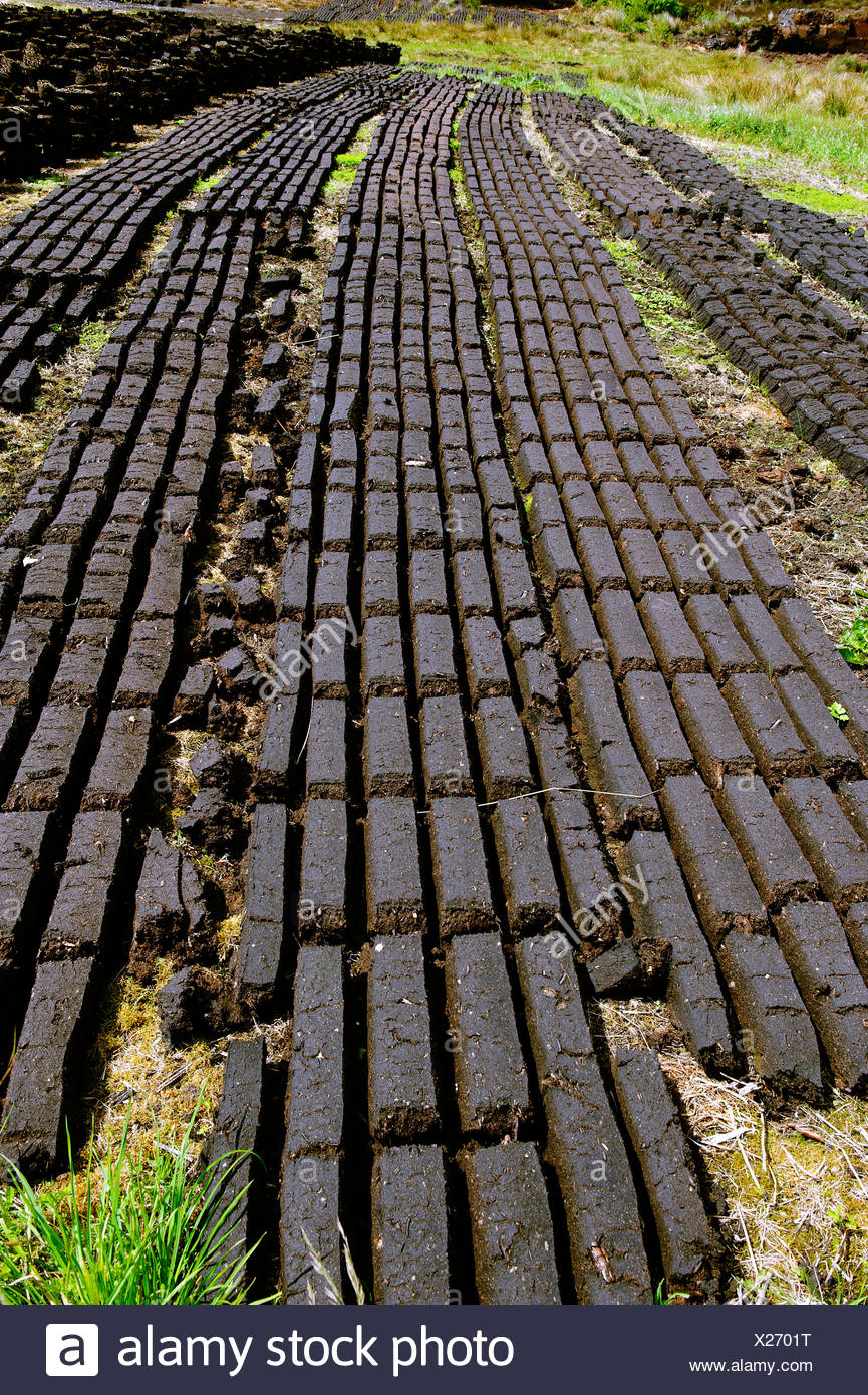 Peat cutting between Doon and Clonmacnoise, County Offaly, Ireland, Europe - Stock Image