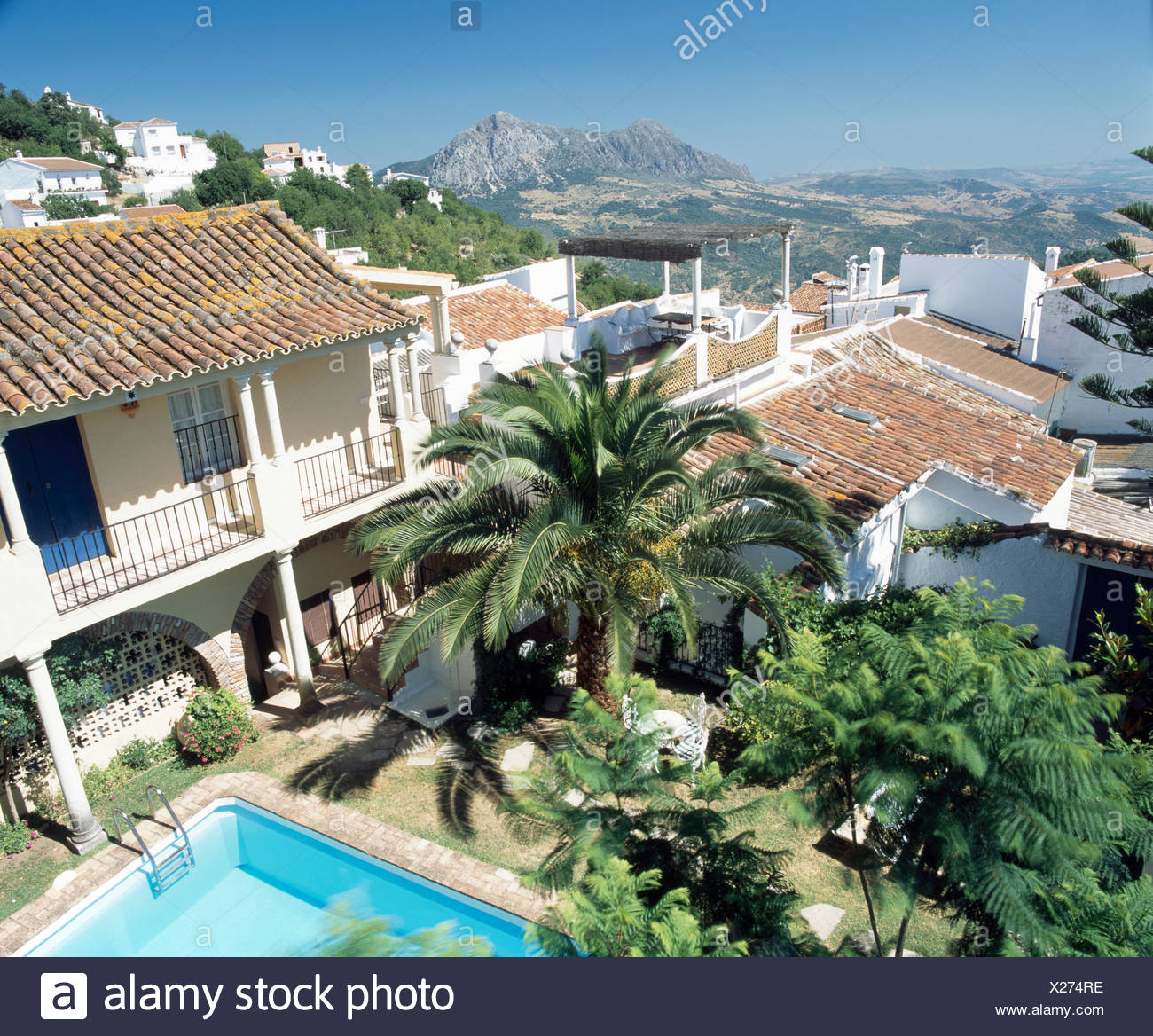 Birdseye view of palm trees in garden of Spanish villa - Stock Image