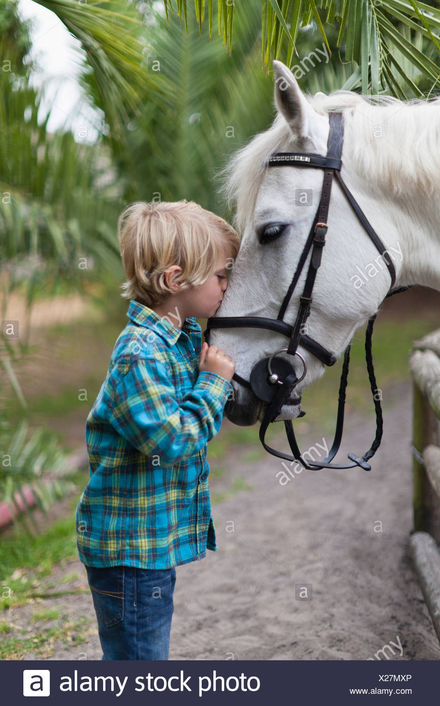 Boy kissing horse in yard - Stock Image