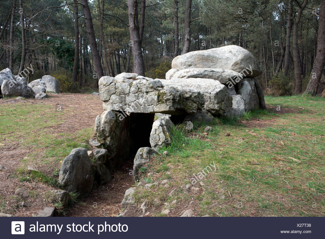Dolmen, portal tomb, portal grave, in a wooded area in Mané-Kerioned, Carnac, Département Morbihan, Brittany, France, Europe - Stock Image