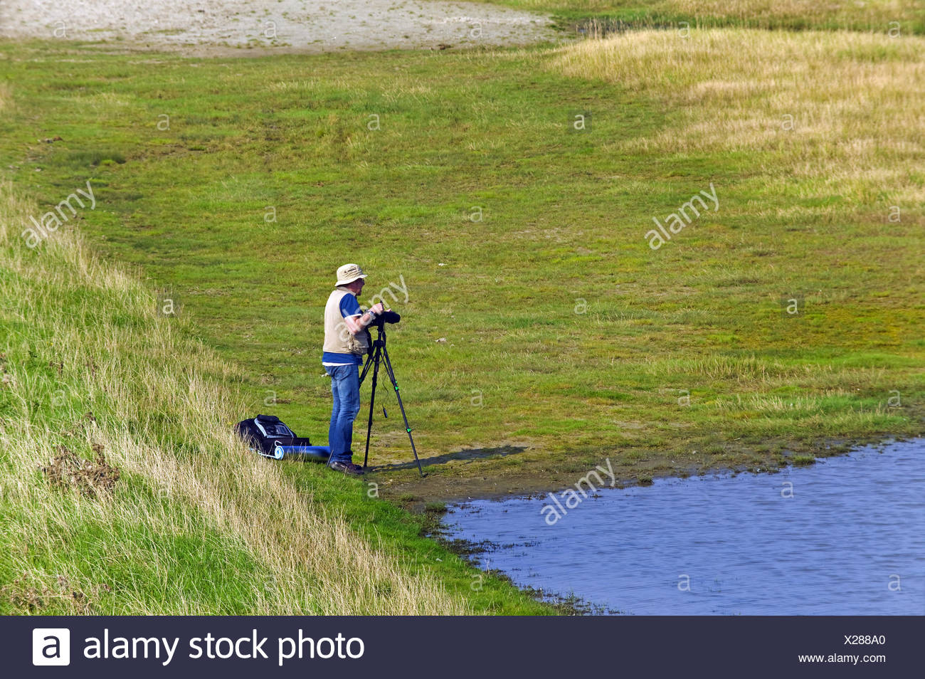 photographer in the saltmarshes of Schillig, Germany, Lower Saxony, Frisia Stock Photo
