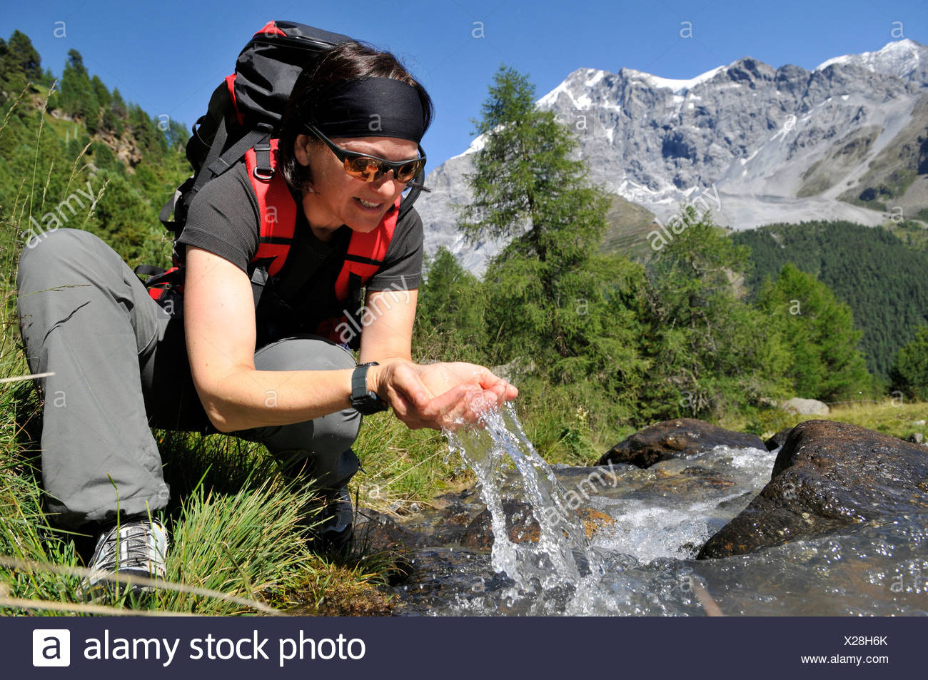 Female hiker drinking water from creek, Trentino-Alto Adige, Italy - Stock Image