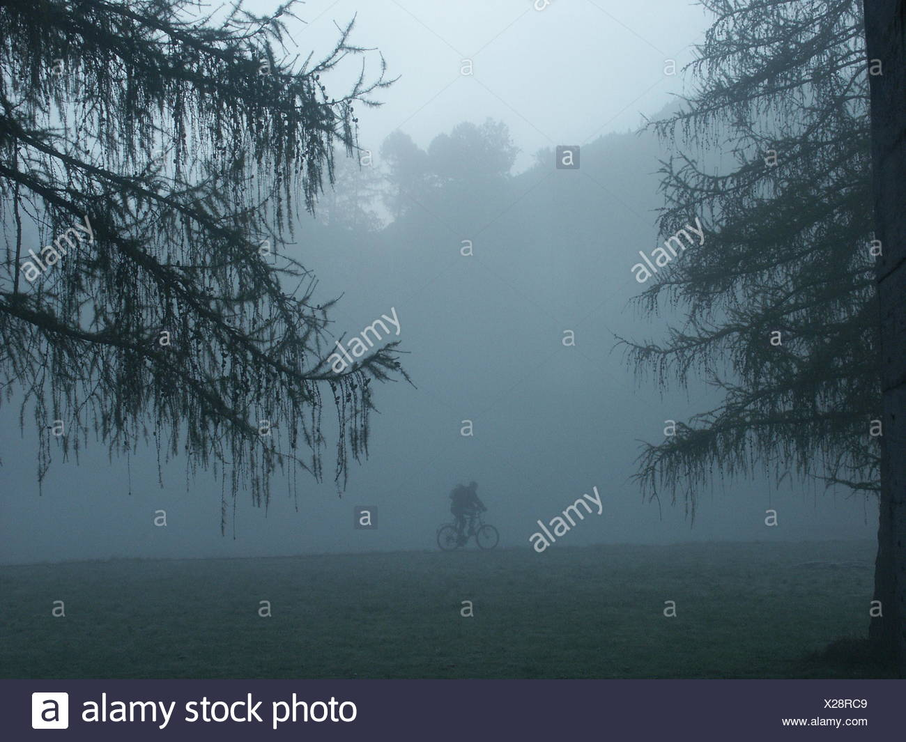cyclists in the fog - Stock Image