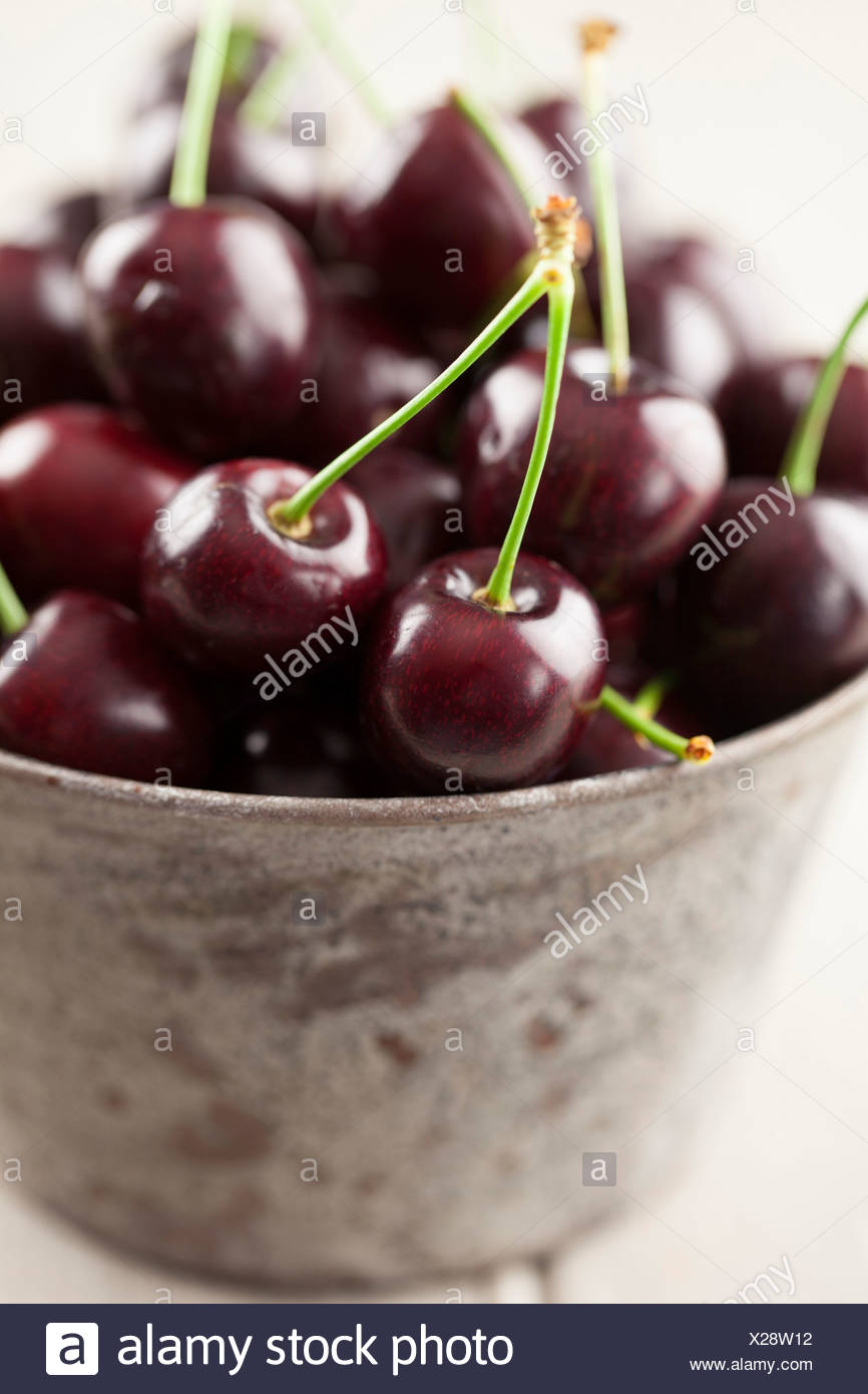 English Cherries in Metal Bowl - Stock Image