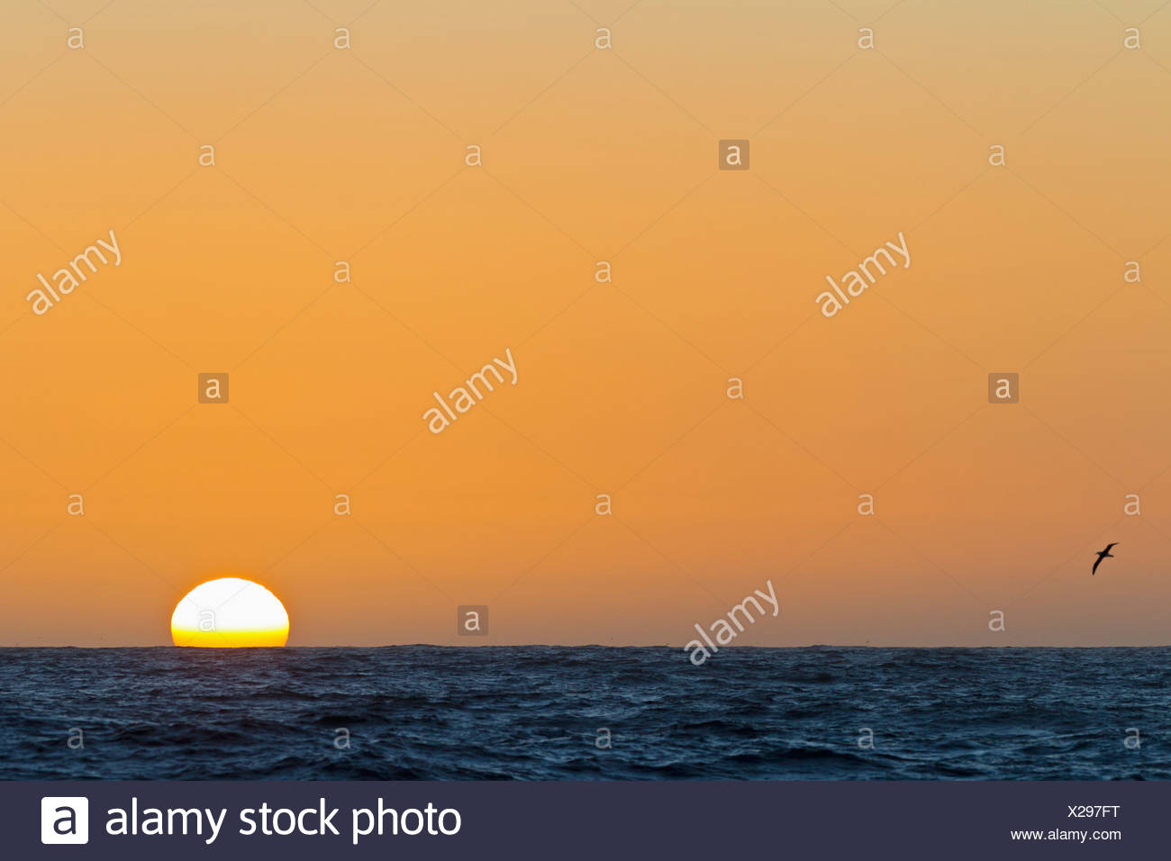 South Atlantic Ocean, View of sunset - Stock Image