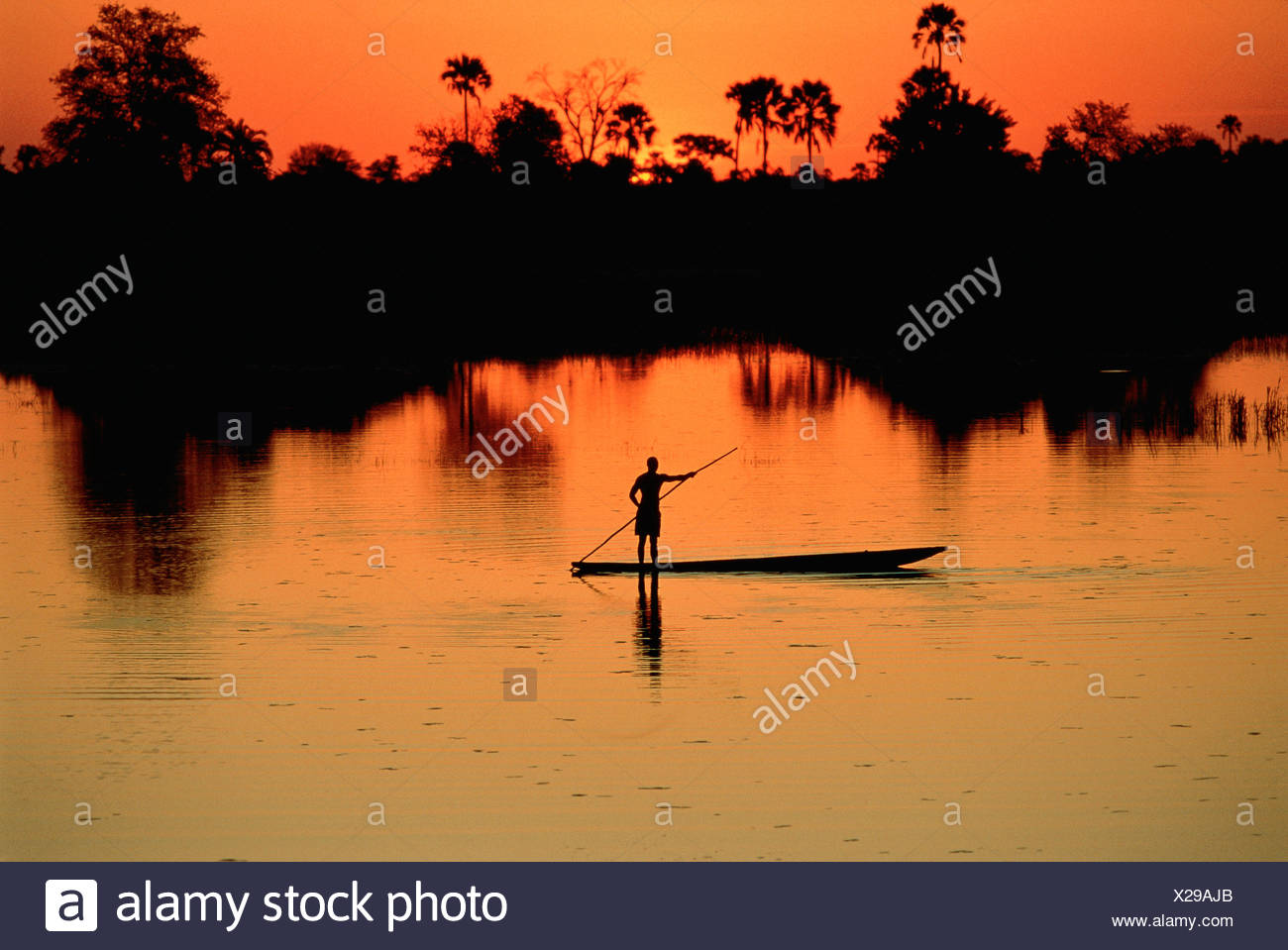 Boatman on the Chobe River at Sunset, Botswana, Africa - Stock Image