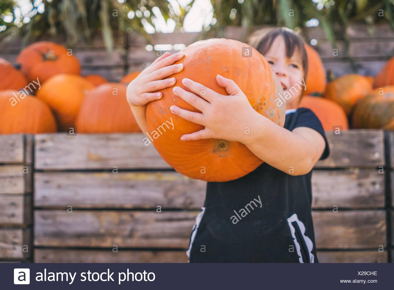 Girl holding large pumpkin at pumpkin farm - Stock Image