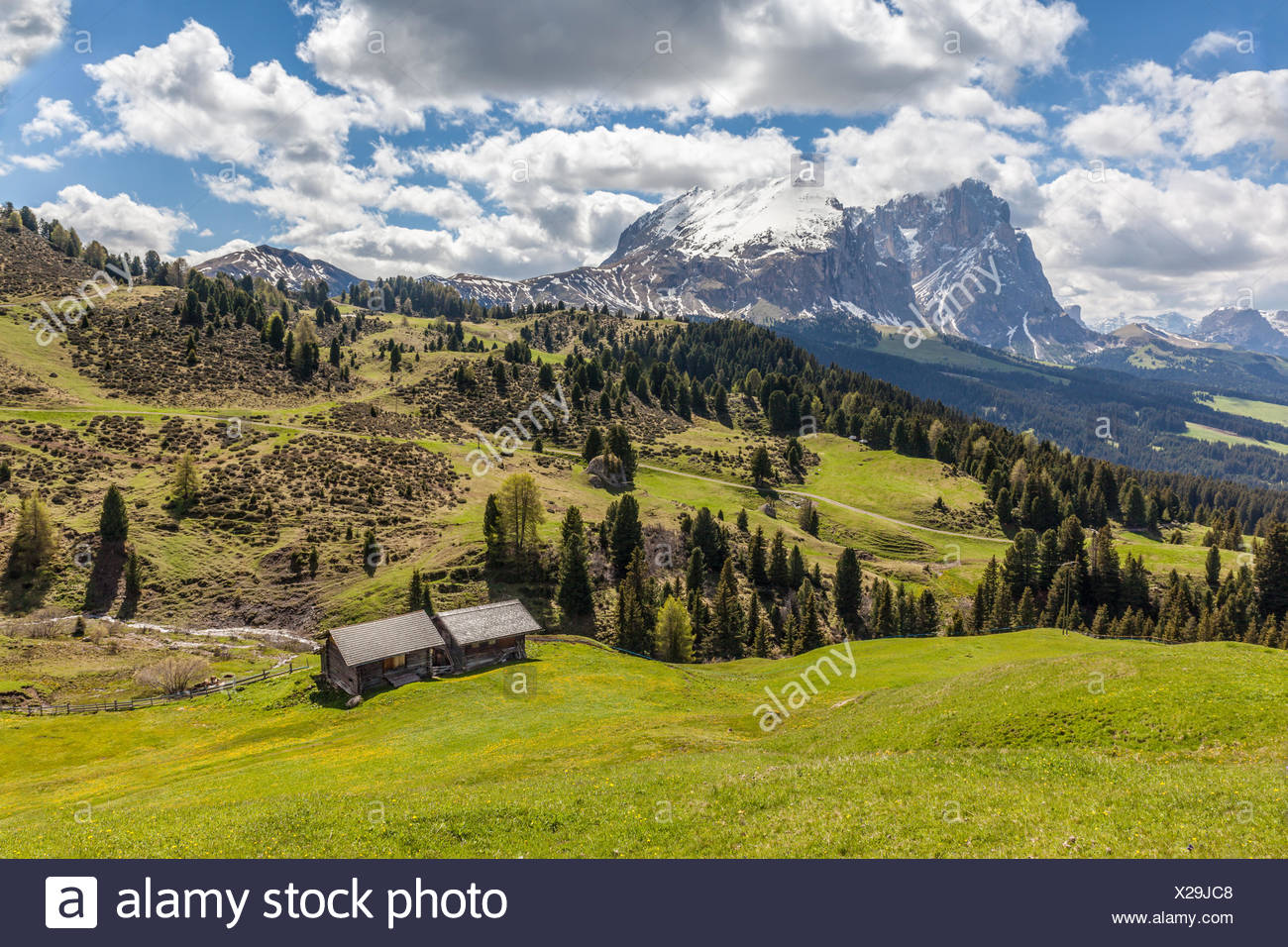 geography / travel, Italy, South Tyrol, Alm and Alpine hut on the Seiser mountain pasture, Additional-Rights-Clearance-Info-Not-Available - Stock Image