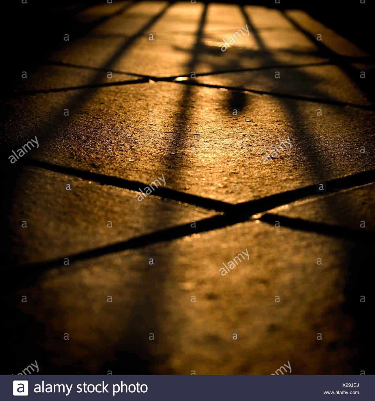 Shadows on floor tiles - Stock Image
