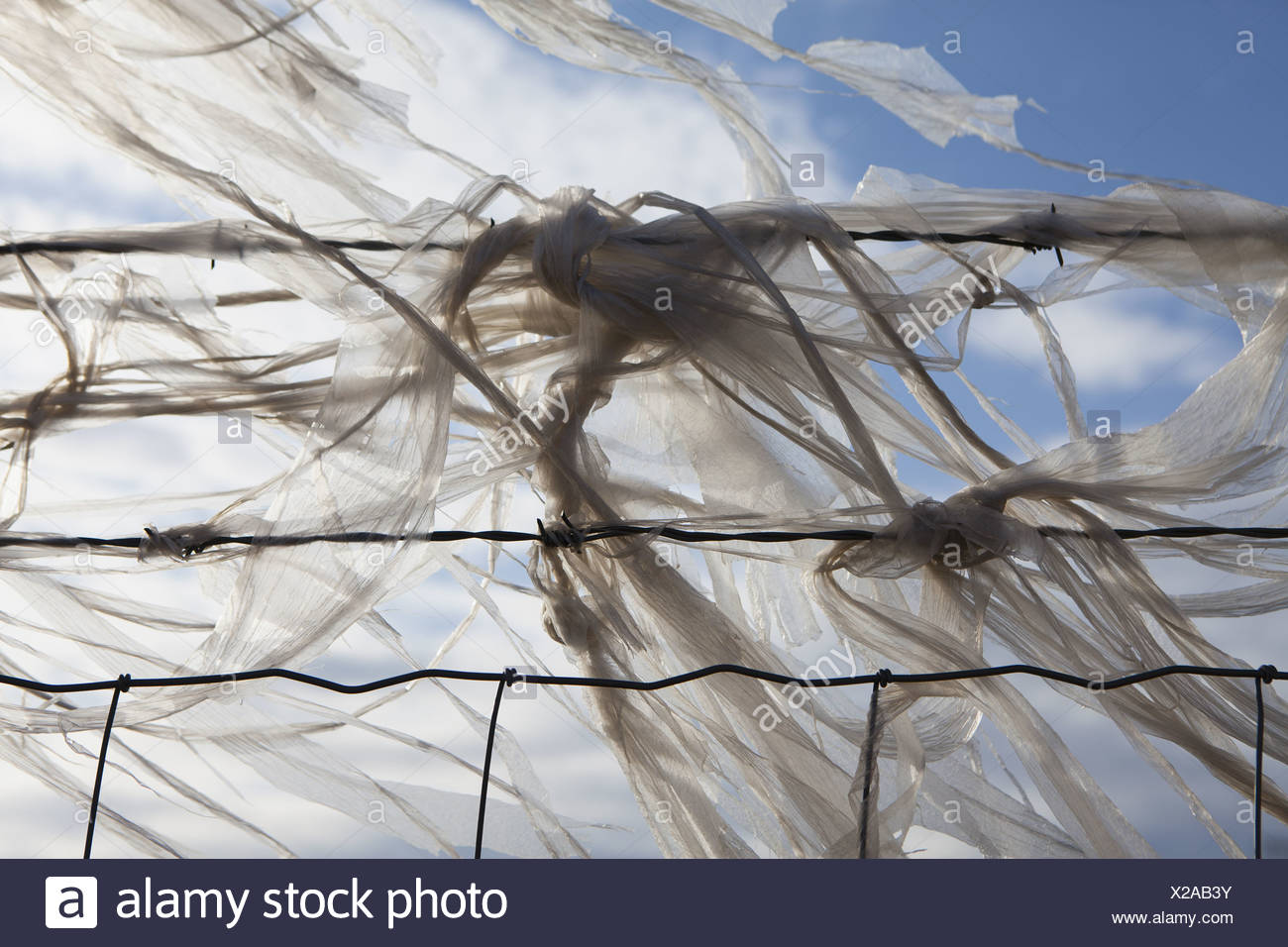 Seattle Washington USA Plastic bags caught on barbed wire fence - Stock Image