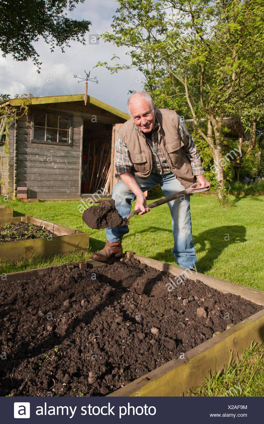 Senior man, digging soil in garden - Stock Image