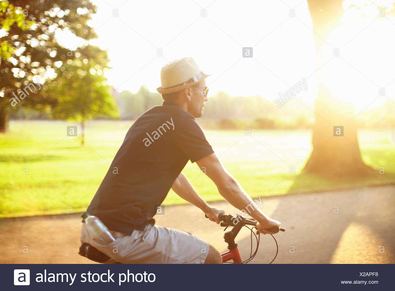Mid adult man riding bicycle in sunlit park - Stock Image