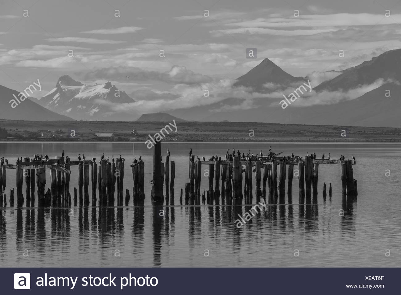 South America; Patagonia,Puerto Natales,Magallanes and Antartica Chilena Region - Stock Image