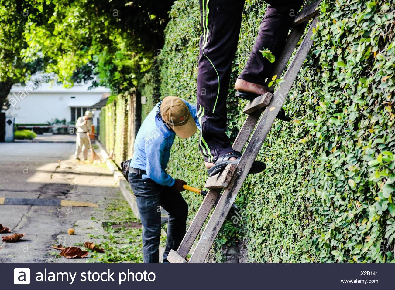 People take care gardens house - Stock Image