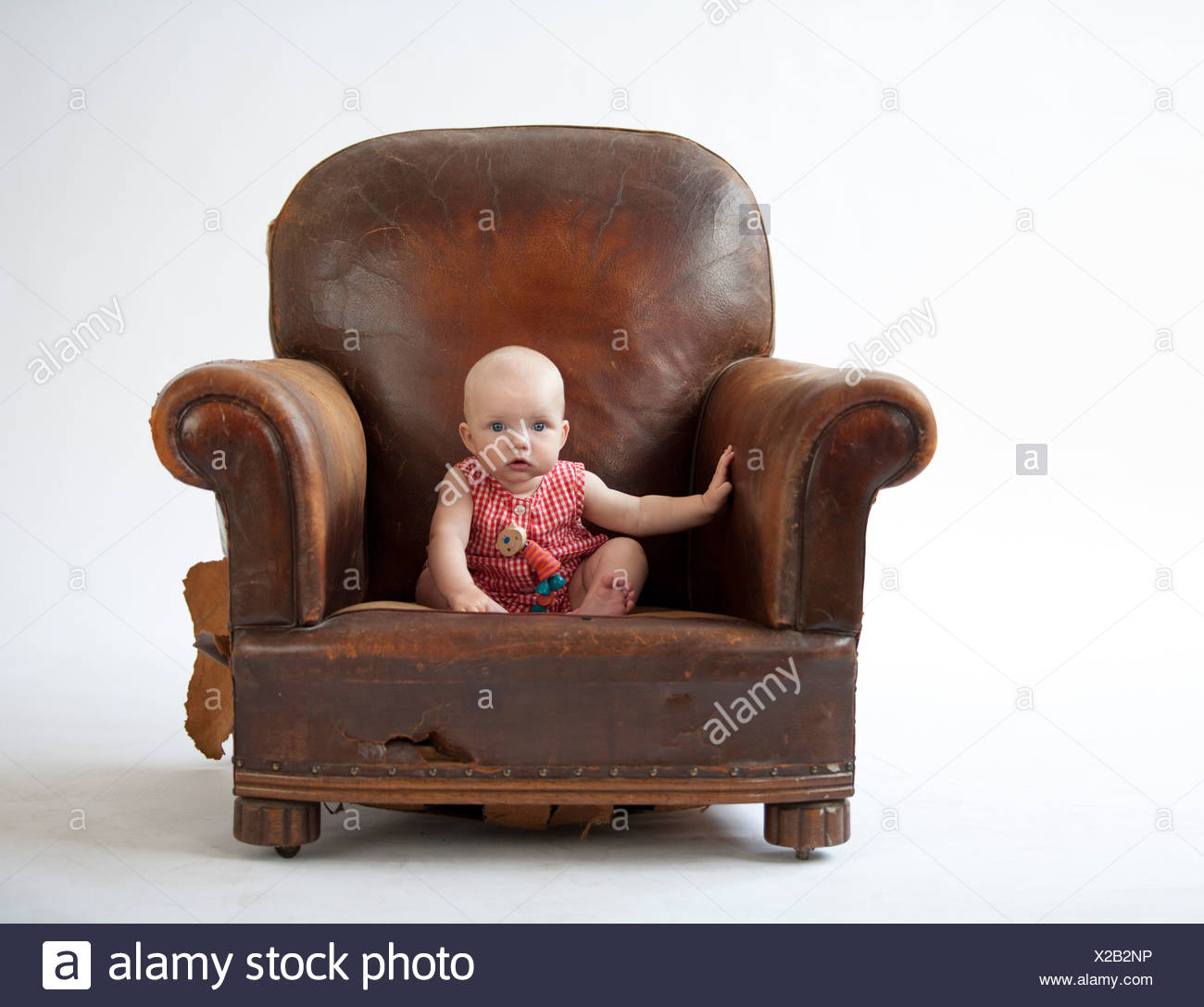 Baby Sitting In Old Leather Chair   Stock Image