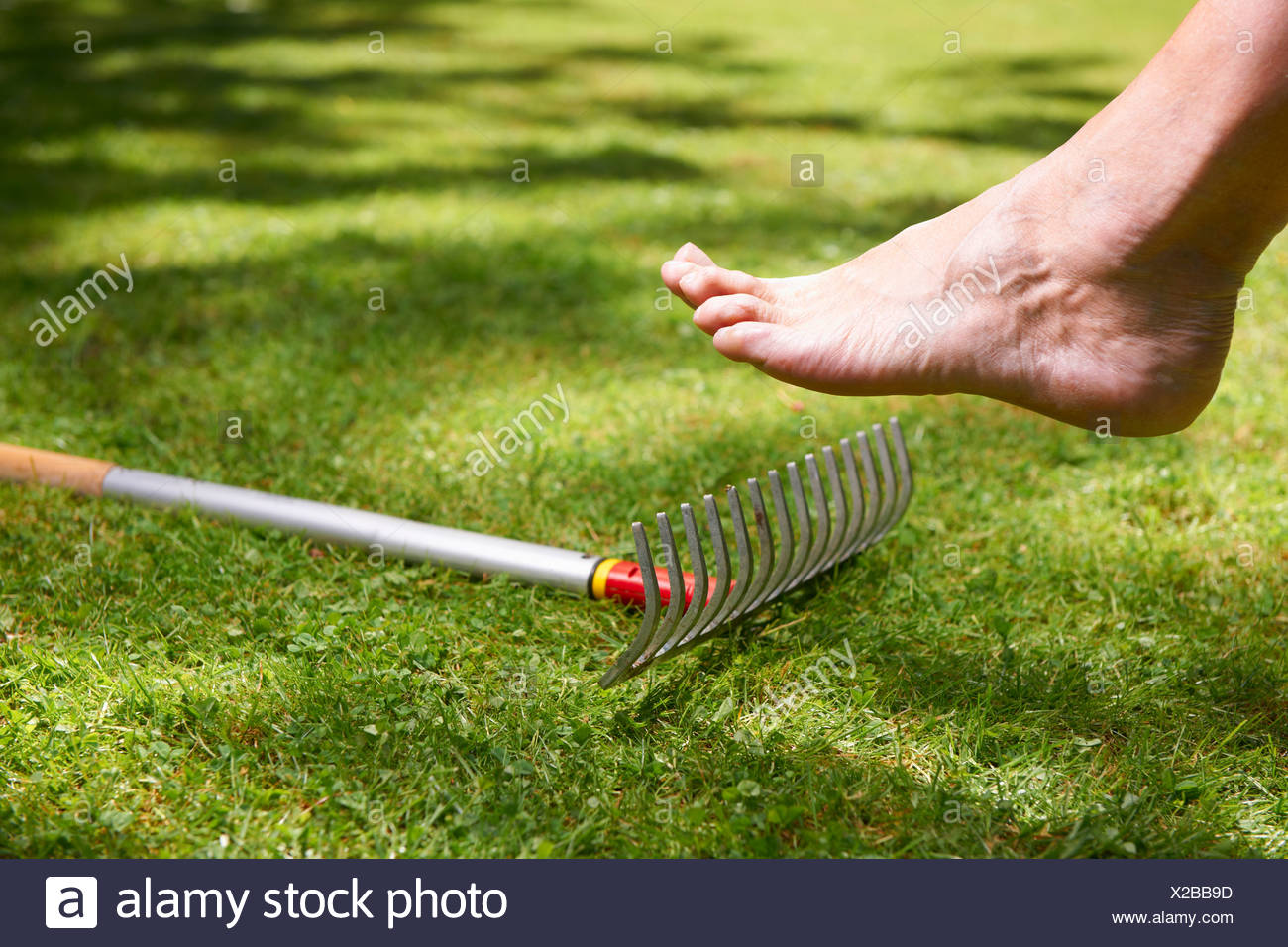 Bare foot about to step on rake - Stock Image
