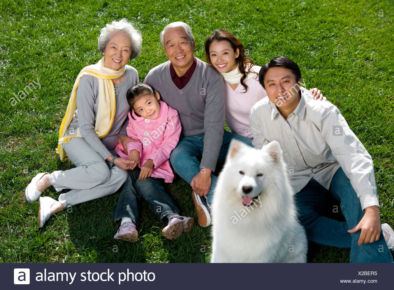 Portrait of a three generational family - Stock Image