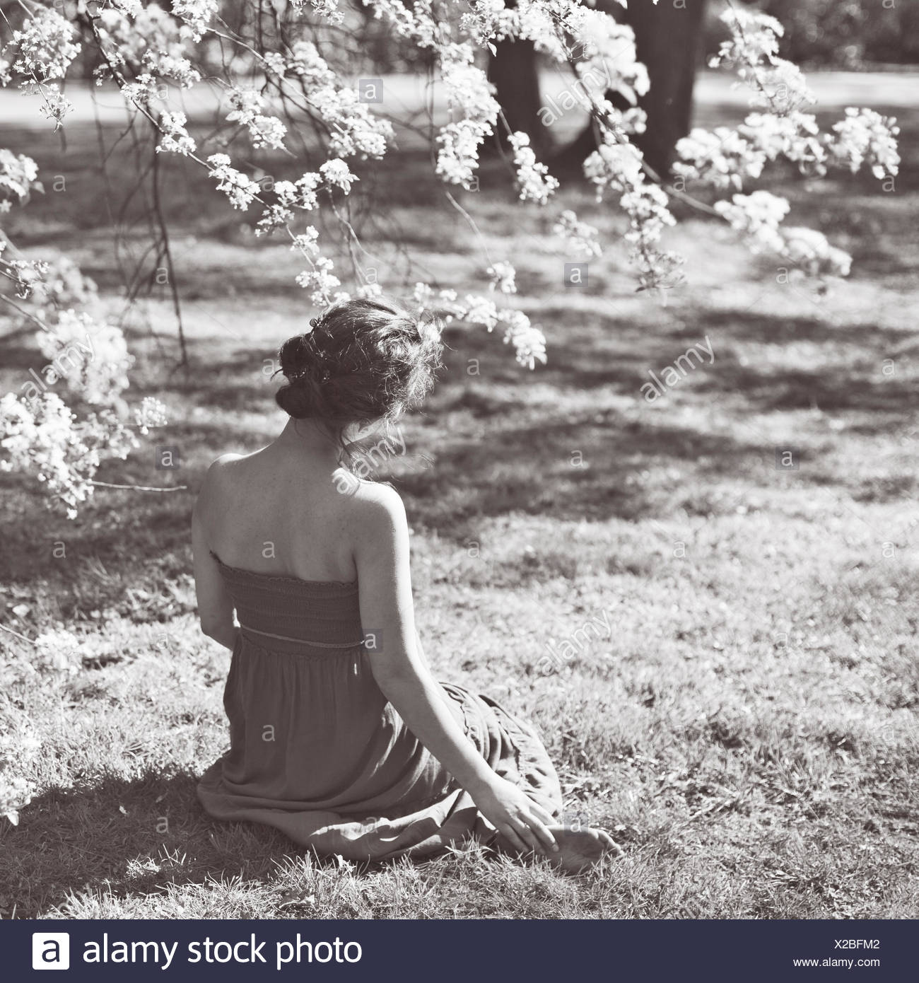 Rear view of young woman sitting on grass - Stock Image