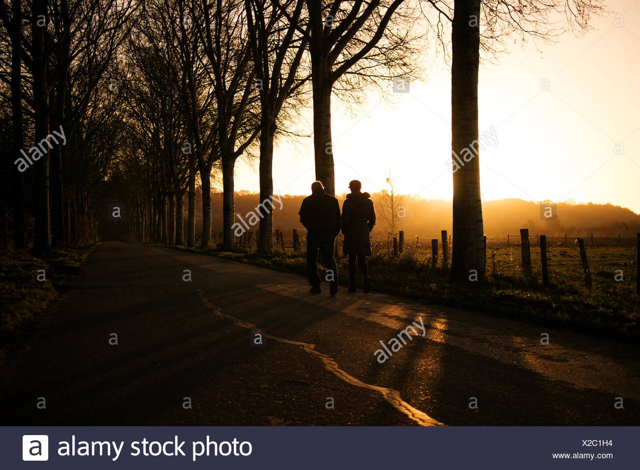 Rear View Of Man And Woman By Trees On Road During Sunset - Stock Image