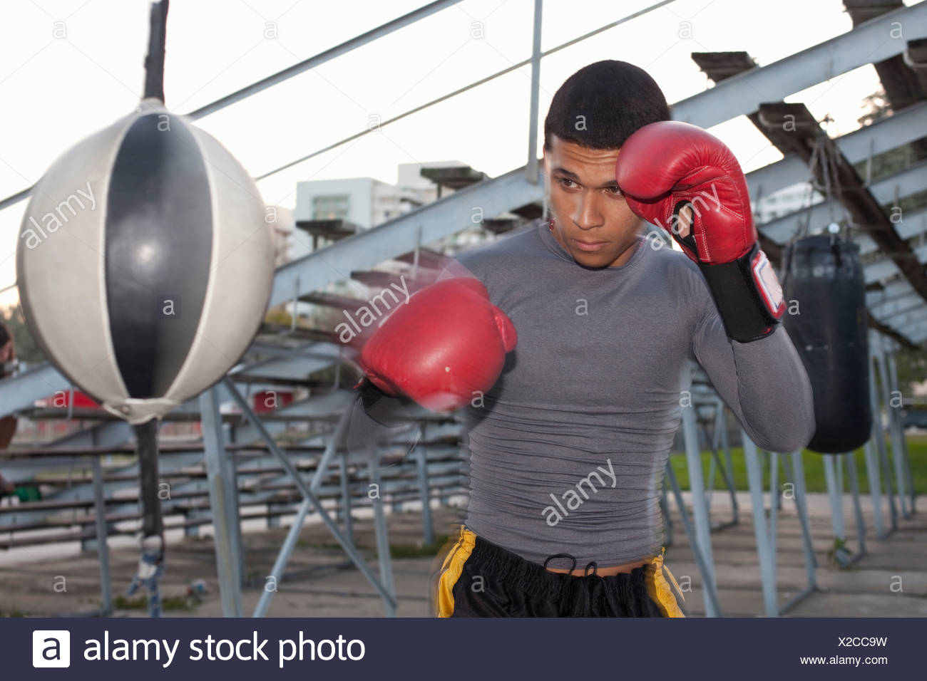 Boxer training with punching bag Stock Photo