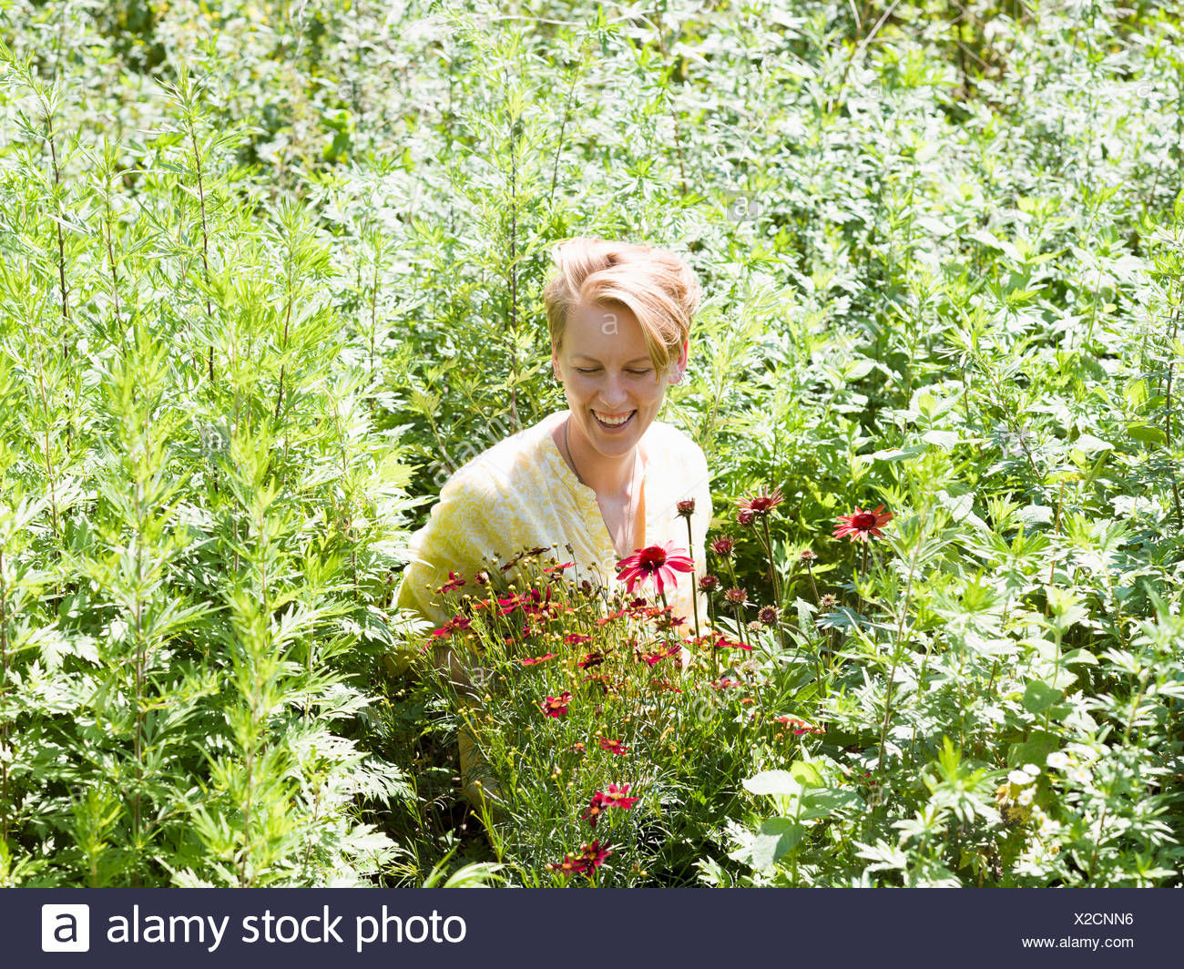 A young woman standing in a perennials bed surrounded by plants and flowers at a plant nursery. - Stock Image