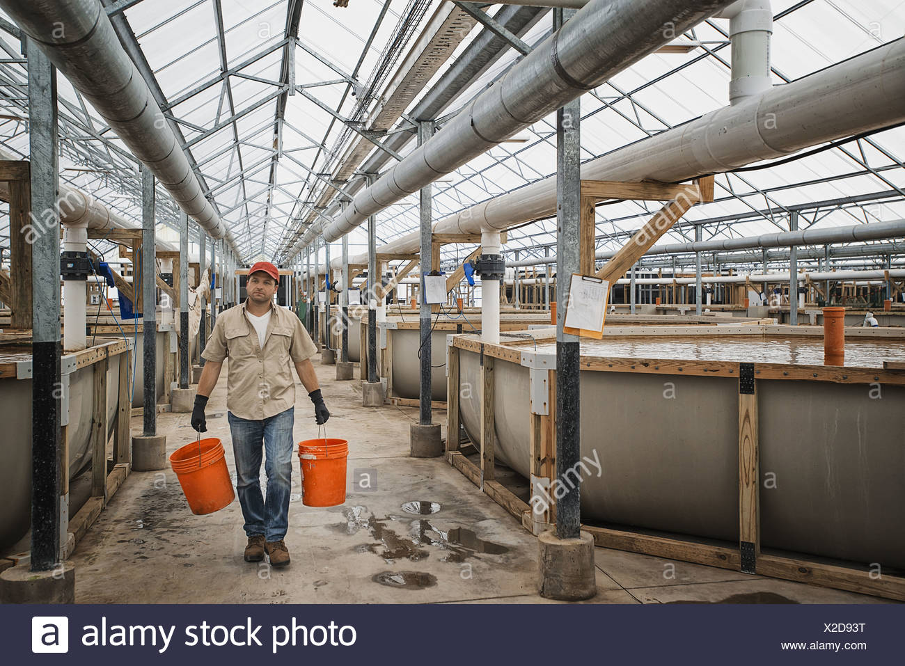 New York state USA large fish farm with raised water breeding tanks - Stock Image