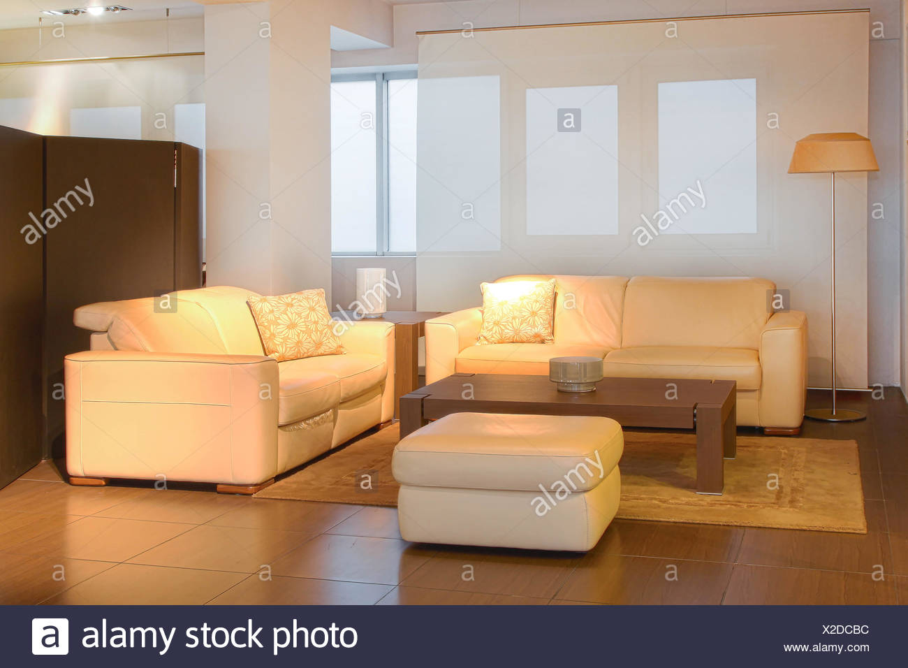 Modern livnig room with two leather sofas Stock Photo ...