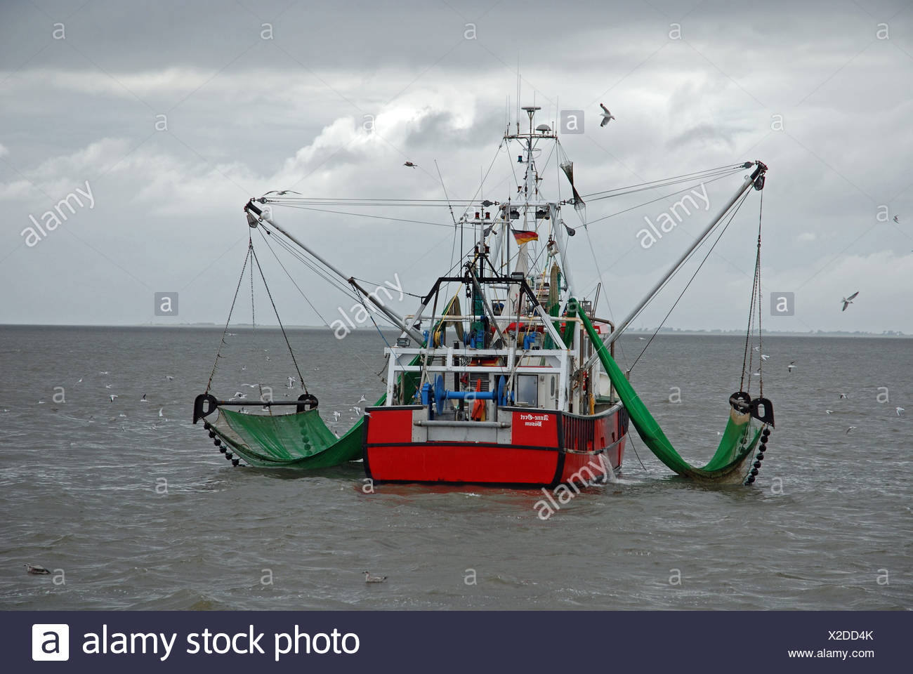 Germany Europe work occupation occupations Boat boats European fishing fishery shrimper Sea fish sea gull - Stock Image