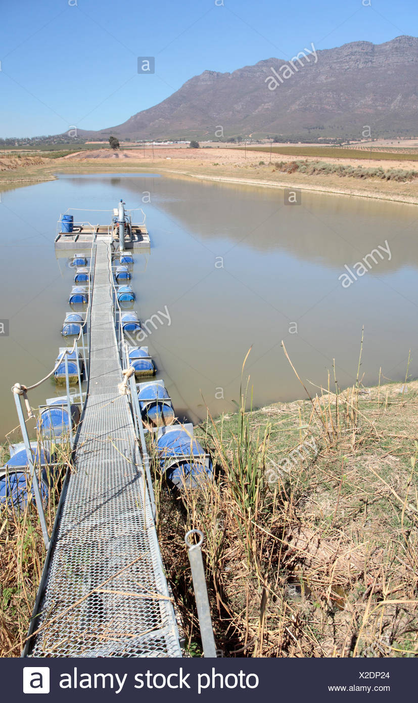 Low dam water levels during a drought, near L'agulhas, Western Cape, South Africa. - Stock Image