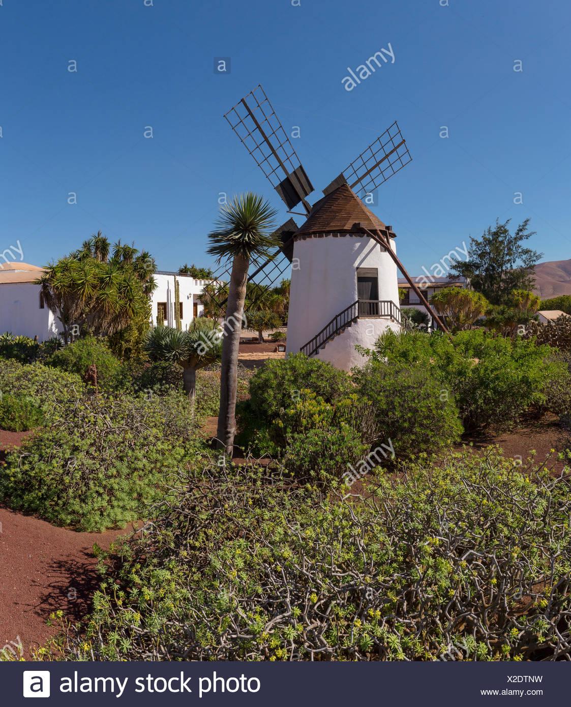Unique Windmill Gardens Gallery - Brown Nature Garden ...
