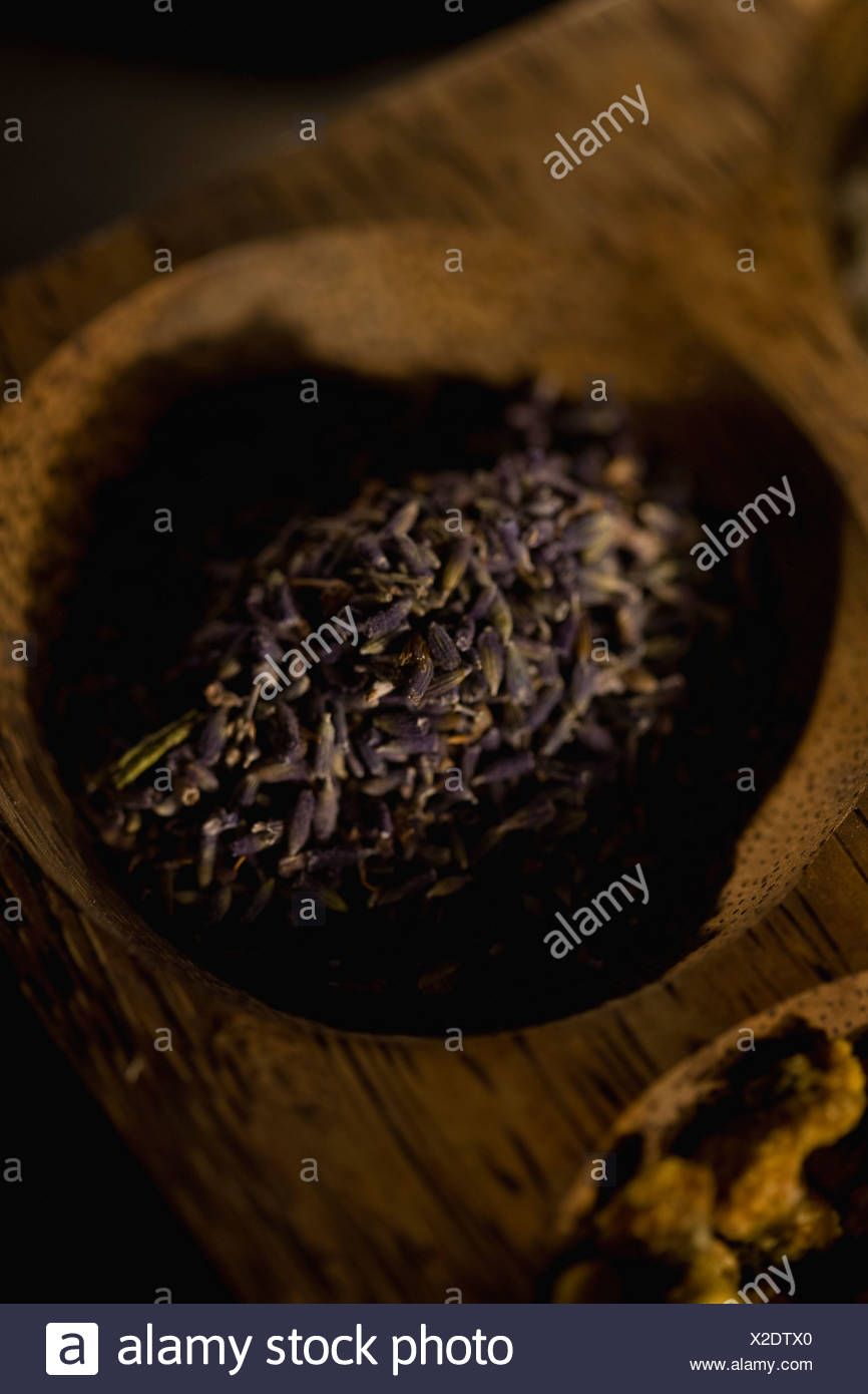 Dried herbs - Stock Image